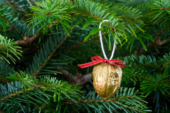 Christmas Tree Nut Decorations - simple and pretty!
